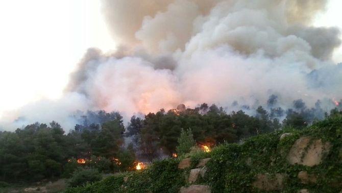 Controlat l'incendi de Vallbona de les Monges, que ha afectat  102,5 hectàrees de vegetació
