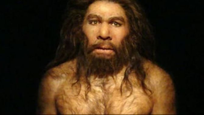 El cromosoma sexual masculí dona noves claus de la barreja entre neandertals i sàpiens