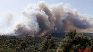 Foc Ribera d'Ebre