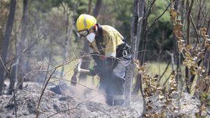 Un bomber treballa en un punt arrasat per les flames a l'incendi forestal de Ventalló (ACN/Gerard Vilà)