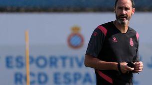 """Vicente Moreno: """"A Sevilla haurem de fregar la perfecció"""""""