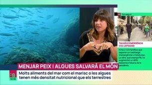 Menjar peix i algues salvarà el món