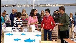 Descobrim les propietats nutricionals i culinàries del peix blau