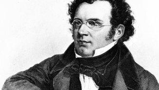 Els homes clàssics 49: l'univers simfònic de Franz Schubert