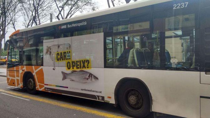 """""""Carn o peix?"""", el missatge de l'autobús de Sant Boi contra l'homofòbia"""