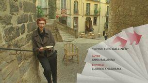 Sant Jordi 2016: recomanacions de narrativa catalana