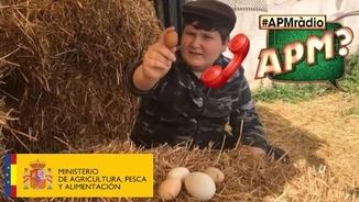 """miquel-montoro:-""""voldria-ser-ministre-d'agricultura-perquè-el-producte-mallorquí-seria-més-valorat"""""""