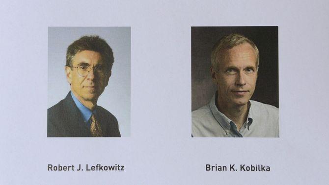 Lefkowitz i Kobilka obtenen el Nobel de Química 2012 pels estudis sobre les proteïnes G i els seus receptors