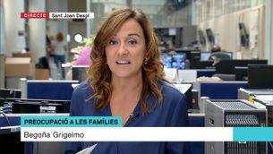 """Begoña Grigelmo: """"Cal estar alerta i vigilar que els nens amb problemàtiques facin servir el videojoc com a eina d'escapament"""""""