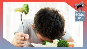 Dieta vegetariana amb criatures, per Núria Llata