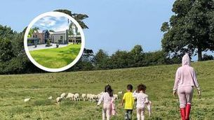 Un ramat d'ovelles obliga Cristiano Ronaldo a canviar de domicili