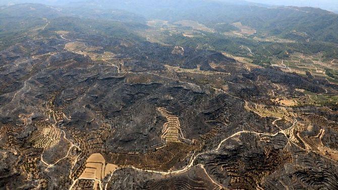 La calor dificulta les tasques d'extinció de l'incendi de la Ribera d'Ebre