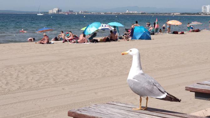 Arriba la calor amb els primers 30 ºC de l'any