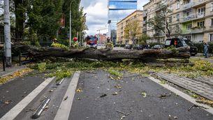 Quatre morts a Polònia per vents huracanats