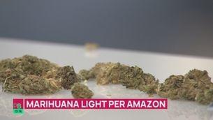 Planta baixa - Es pot comprar marihuana light per Amazon?