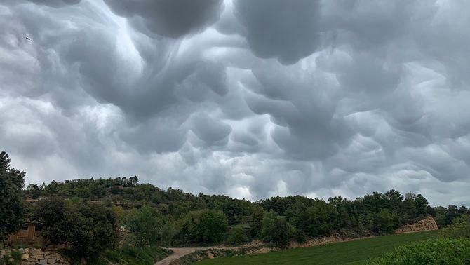 Núvols mamma, d'aspecte terrorífic però inofensius