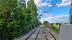 La caiguda d'un arbre entre Caldes de Malavella i Maçanet afecta la circulació de trens