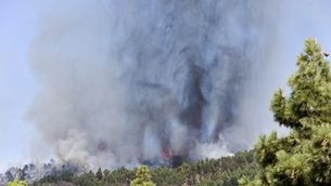 L'erupció ha començat a la zona de Las Manchas del complex volcànic de Cumbre Vieja, al municipi d'El Paso poques hores després que comencés l'evacuació de la zona (EFE/Miguel Calero)