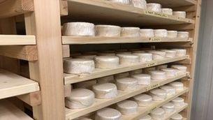 Neix a Alpens una formatgeria col·lectiva i un obrador comunitari