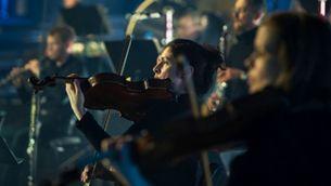 Violins de l'Orquestra Simfònica Alemanya de Berlín