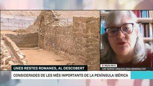 """Maite Miró: """"Les restes arqueològiques estan més ben protegides sota cobert que a la intempèrie"""""""
