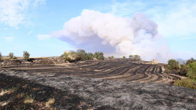 Un camp de conreu cremat al terme municipal de Santa Coloma de Queralt