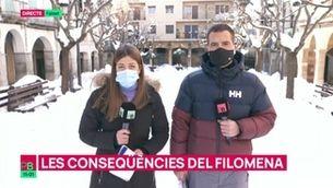 Planta baixa - Les conseqüències del temporal Filomena a Catalunya