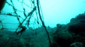 Imatge de:Lluita contra les xarxes de pesca fantasma, abandonades al fons del mar