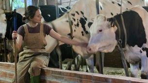 Una granja d'11 vaques