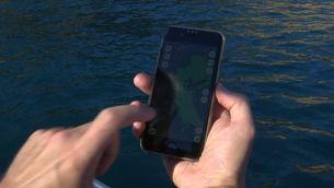 La Generalitat aporta una aplicació de mòbil a les barques d'esbarjo per protegir la posidònia