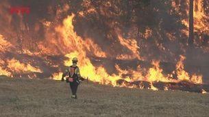 Catalunya supera un estiu extrem amb molts focs però menys hectàrees cremades