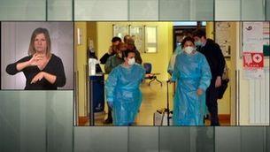 Alerta pel coronavirus a Itàlia - Llengua de signes