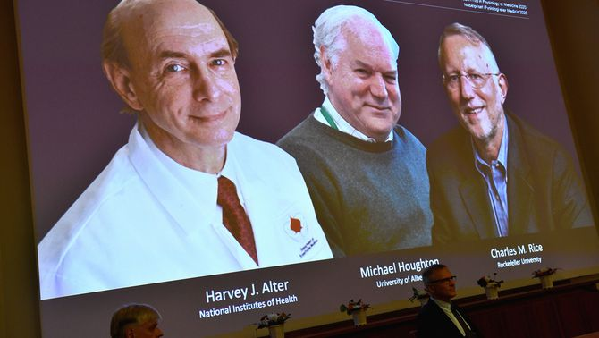 El Nobel de Medicina premia 3 viròlegs per descobrir el virus de l'hepatitis C