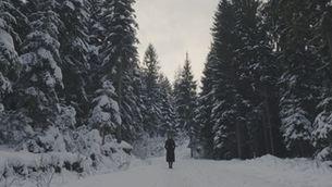 """Tràiler """"Encara hi ha algú al bosc"""""""