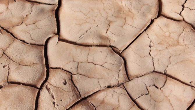 La desertització avança: causes i efectes