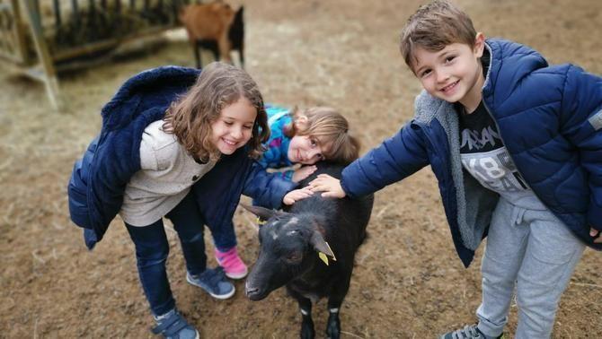 """""""L'ofici d'educar"""" celebra els cinc anys a La Granja Escola de Santa Maria de Palau Tordera"""
