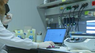 Les vacunes d'ARN es poden transportar, a temperatura ambient i durant tres hores, sense risc