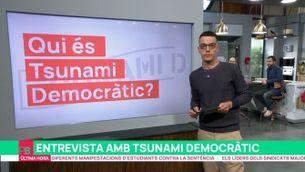 """Tsunami Democràtic planteja """"accions continuades en el temps i molt clares"""""""