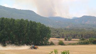 Els alcaldes de la Conca de Barberà i l'Anoia reclamen polítiques d'aprofitament i gestió forestal