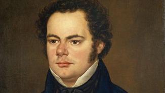 Imatge de:Franz Schubert, l'esclat dels últims mesos (6/10)
