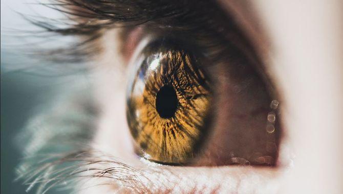 Pagar amb la cara, l'iris o la veu, present i futur de les compres