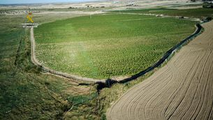 Intervenen a Toledo la plantació de marihuana més gran d'Europa, com 15 camps de futbol