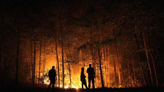 El govern ucraïnès alerta que hi ha un incendi que crema a 60 quilòmetres de la central nuclear de Txernòbil