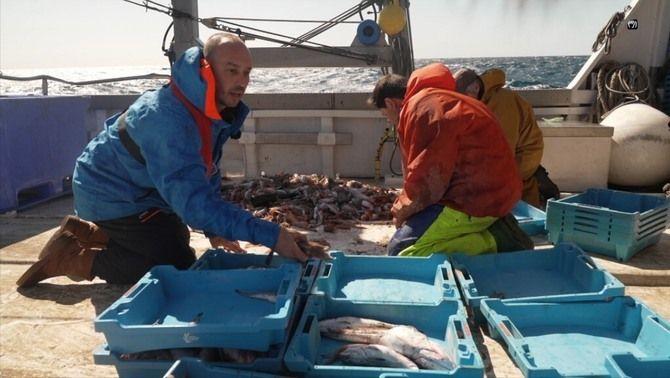 """Quim Casellas, presentador de """"La mar de bé"""", triant el peix amb uns pescadors"""