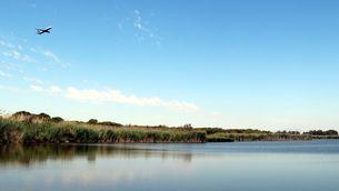 Vista general de l'estany de la Ricarda