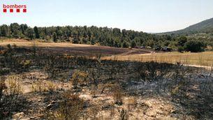 Un incendi crema 2,5 hectàrees agrícoles a Sant Jaume dels Domenys