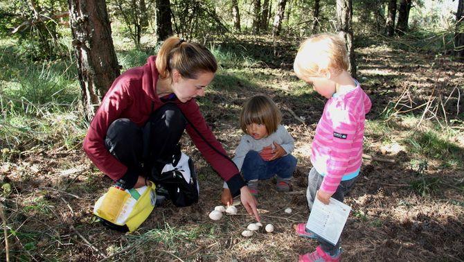 Pla general de dos alumnes i una de les professores d'Arrels Escola Bosc de Cortariu, a Bellver de Cerdanya, mirant uns bolets que hi ha al ter…