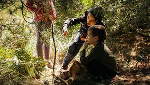 Els avantatges d'aprendre a la natura i a l'aire lliure