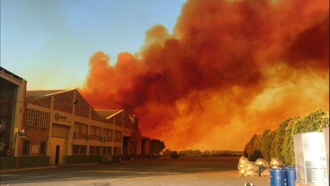 Espectacular fumera en una indústria entre Sudanell i Montoliu de Segrià