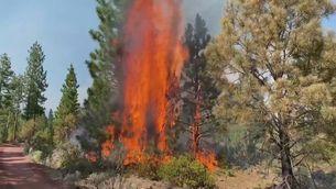 Mes de 120.000 hectàrees cremades a Oregon en menys de 15 dies